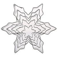 BESTONZON 5本のクリスマススノーフレークカッターのクッキーステンレス鋼フォンダンケーキペストリー金型DIYのベーキングツール