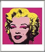 ポスター アンディ ウォーホル マリリンモンロー 1967 (hot pink) 額装品 アルミ製ハイグレードフレーム(シルバー)
