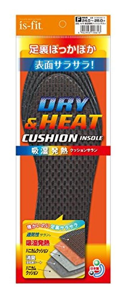 平らにするフォーク痴漢is-fit(イズフィット) 吸湿発熱クッションサラン 男性用 フリー(24.0cm~28.0cm)