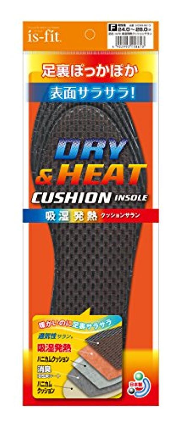落ち込んでいるワンダー一族is-fit(イズフィット) 吸湿発熱クッションサラン 男性用 フリー(24.0cm~28.0cm)