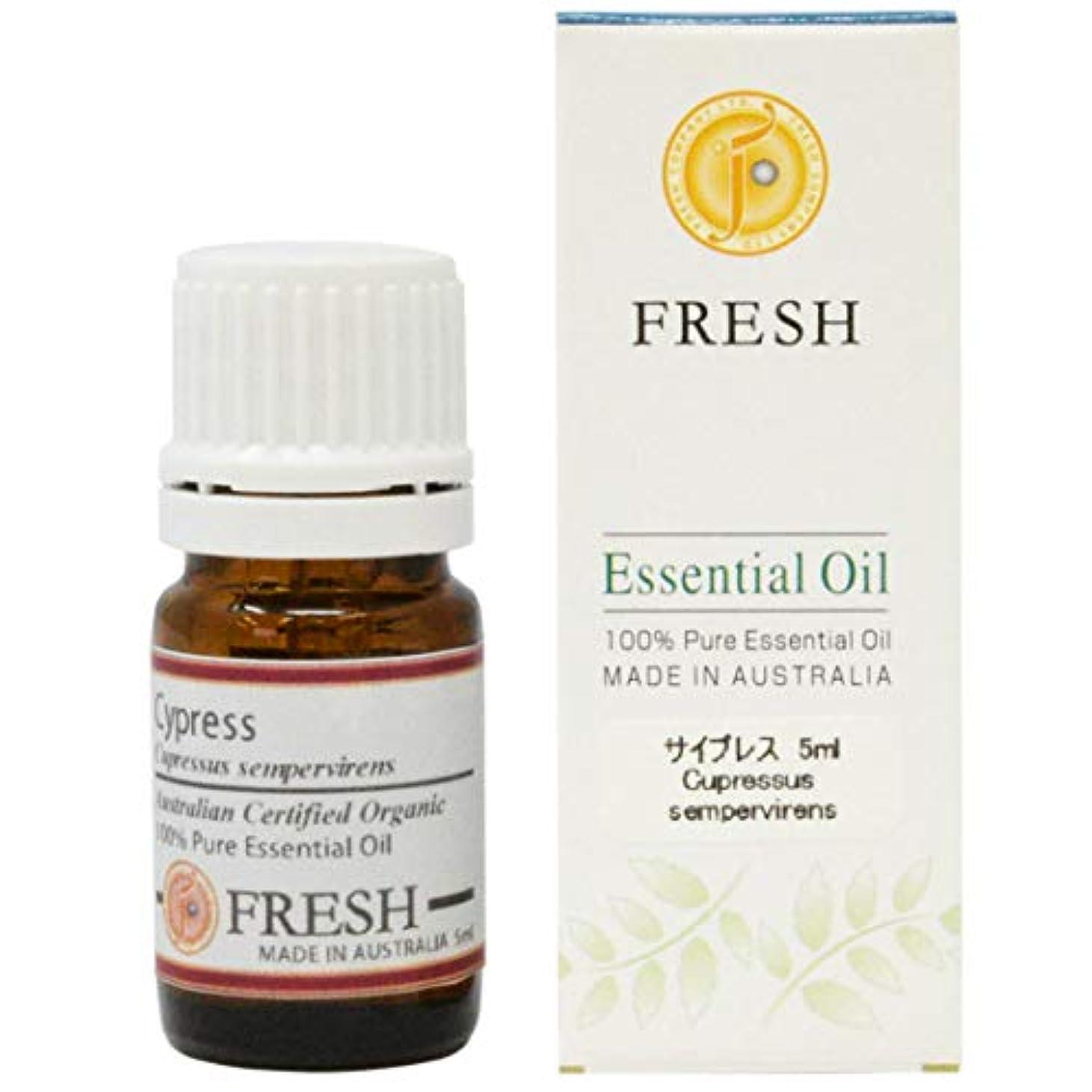 決定活性化するジャングルFRESH オーガニック エッセンシャルオイル サイプレス 5ml (FRESH 精油)