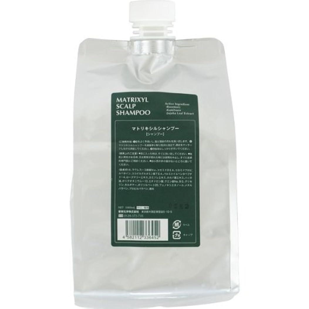 プットディプロマバナナ香栄化学 マトリキシル スキャルプシャンプー レフィル 1000ml
