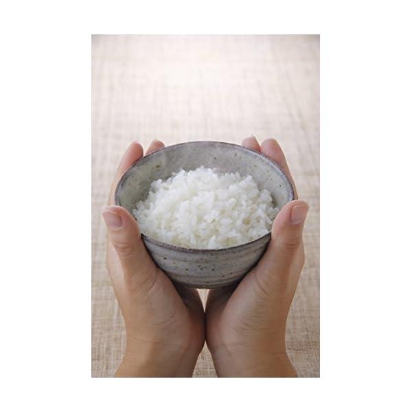 【精米】新潟県 北越後産 特別栽培米 白米 こ...の紹介画像3