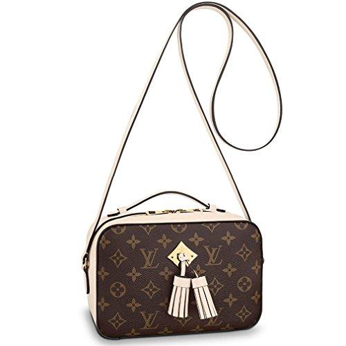 Louis VuittonパラスチェーンDuneカラークラッチショルダーバッグクロスボディArticle : m50069