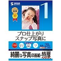 (2個まとめ売り) サンワサプライ インクジェット写真印画紙・特厚 JP-EP2NA4