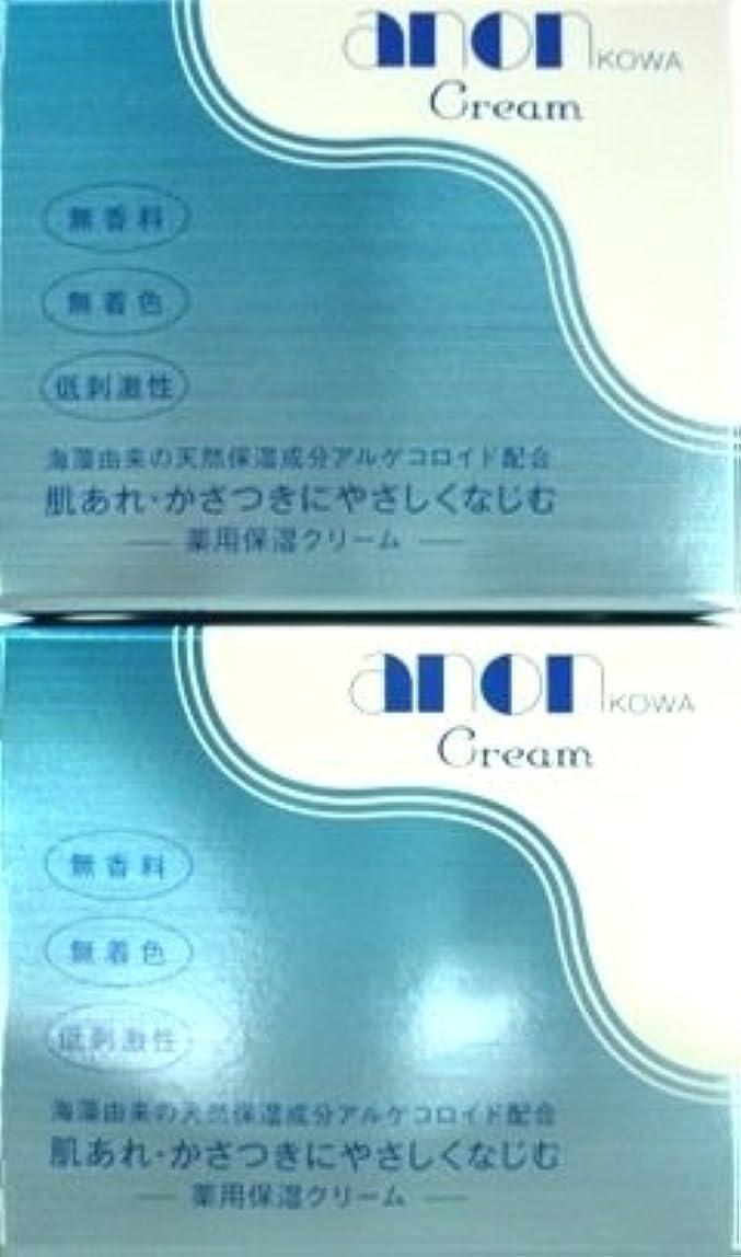 暗殺気怠い無知興和新薬 アノンコーワクリーム(160g)×2