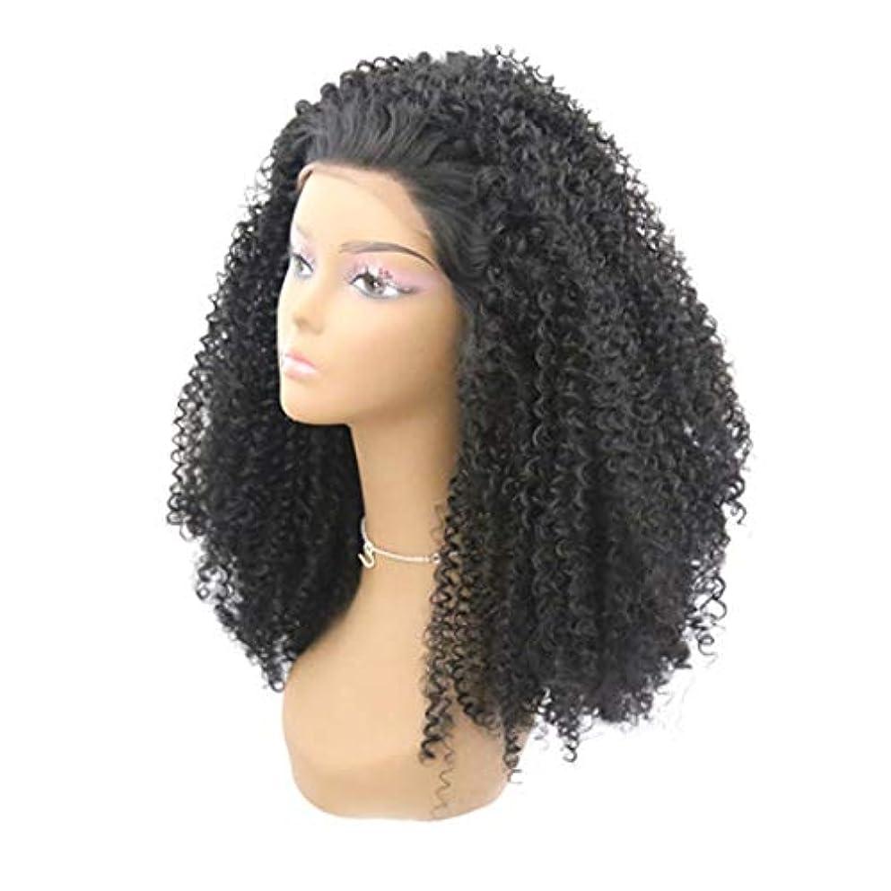 匹敵します多用途圧倒するKerwinner 合成かつらレースフロントかつら赤ん坊の毛髪自然な生え際耐熱ファイバーレースかつらで長い緩い巻き毛かつら女性のための自然な黒のかつら (Size : 18inch)