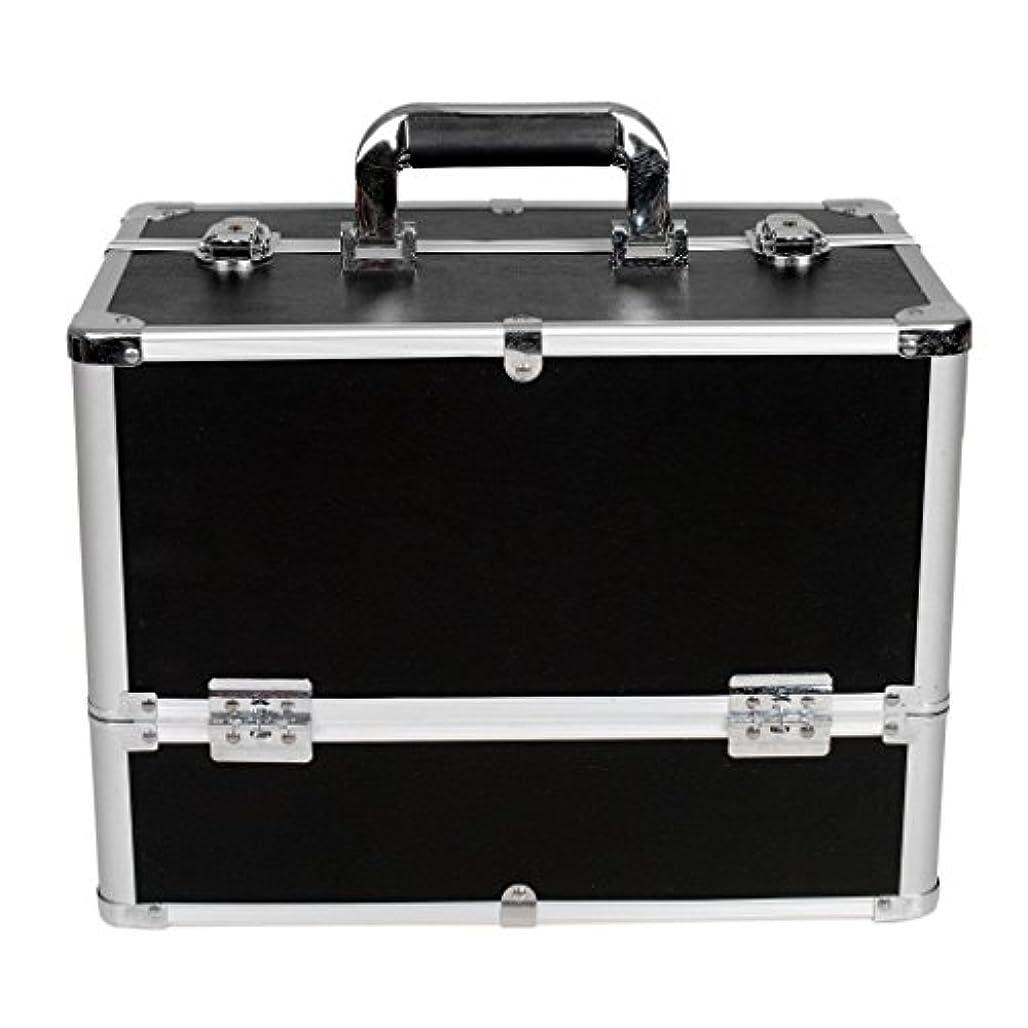 養うエレクトロニック逆さまに[プロ仕様]Hapilife メイクボックス 大容量 6つトレイ 幅37cm ネイル ジュエリー ドライヤー アクセサリー シューケア用品 収納ケース ブラック