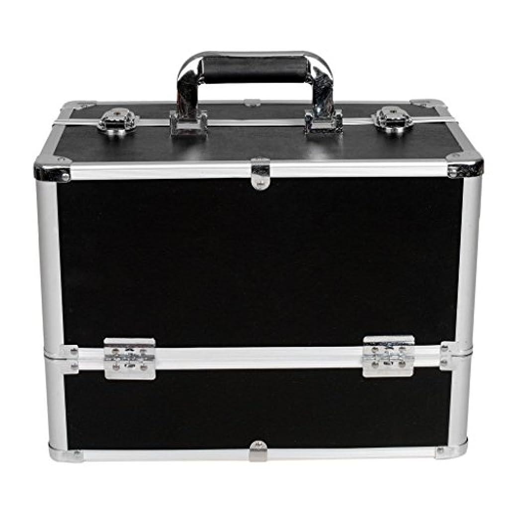 許さない家主脅威[プロ仕様]Hapilife メイクボックス 大容量 6つトレイ 幅37cm ネイル ジュエリー ドライヤー アクセサリー シューケア用品 収納ケース ブラック