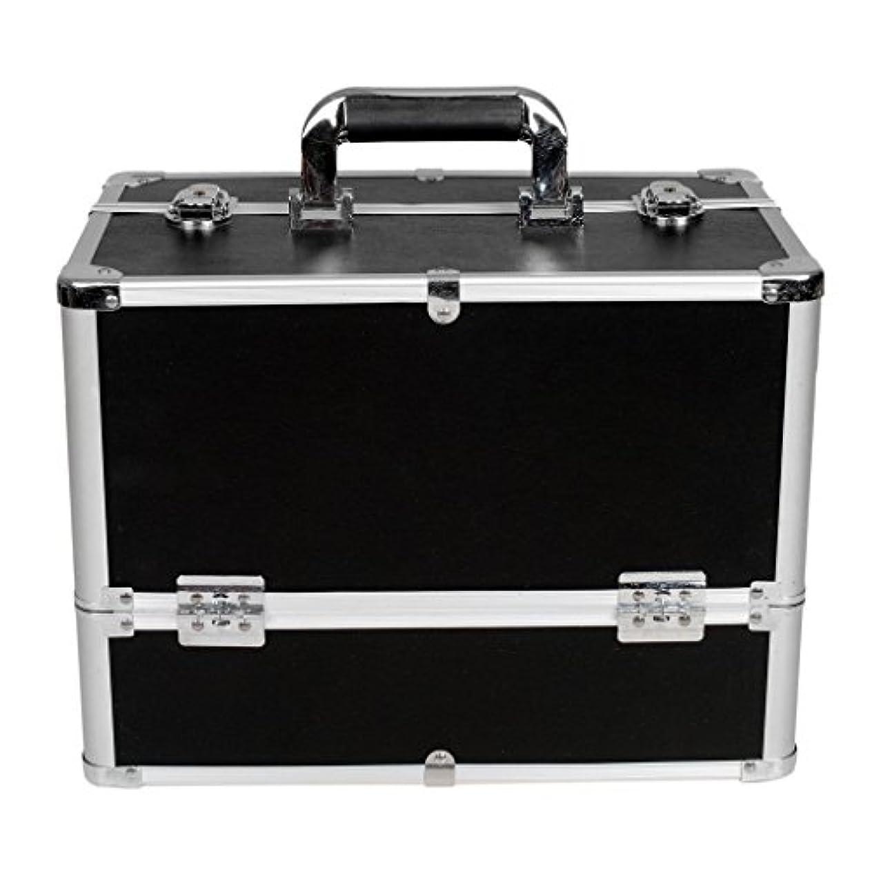 ベスビオ山懐疑論ベッドを作る[プロ仕様]Hapilife メイクボックス 大容量 6つトレイ 幅37cm ネイル ジュエリー ドライヤー アクセサリー シューケア用品 収納ケース ブラック