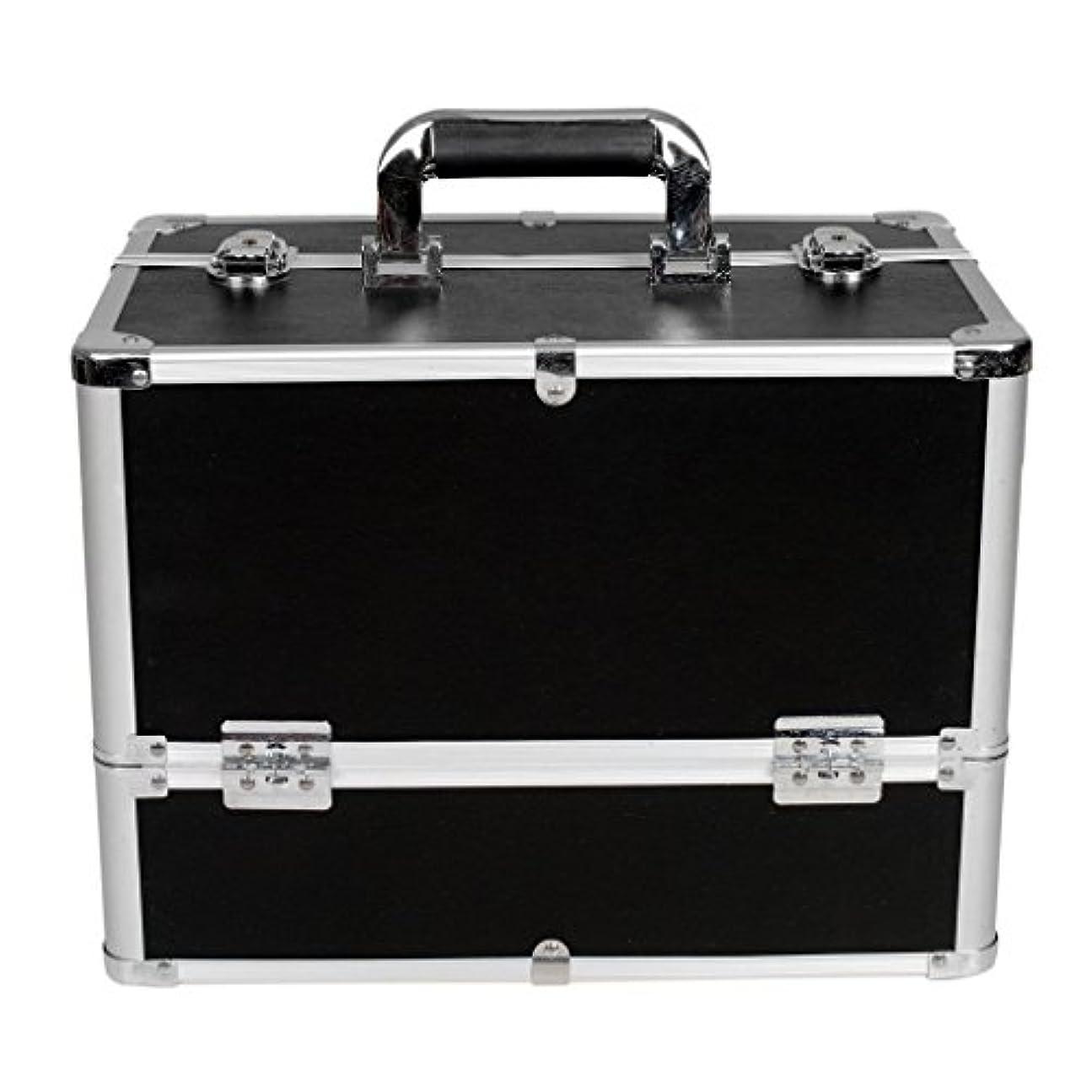 観点ライナー意図する[プロ仕様]Hapilife メイクボックス 大容量 6つトレイ 幅37cm ネイル ジュエリー ドライヤー アクセサリー シューケア用品 収納ケース ブラック