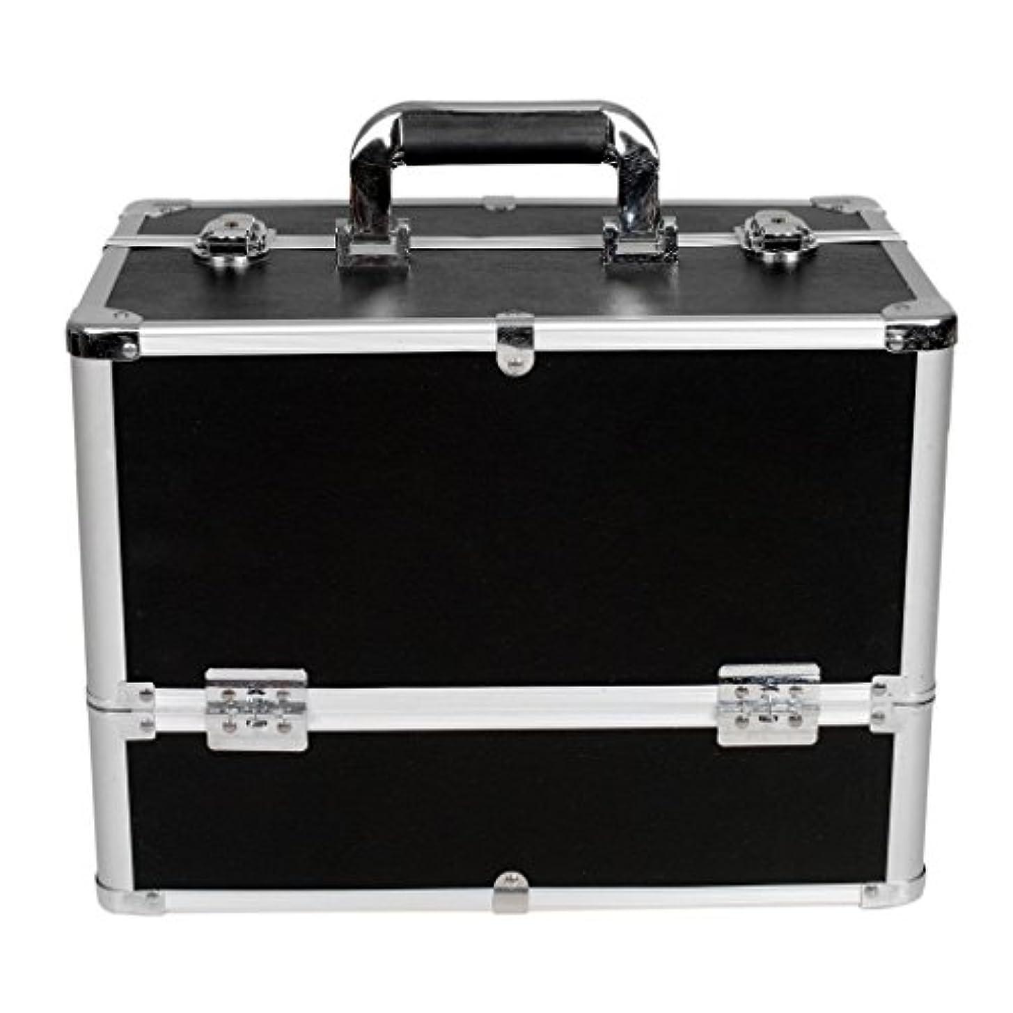 稼ぐ夫またね[プロ仕様]Hapilife メイクボックス 大容量 6つトレイ 幅37cm ネイル ジュエリー ドライヤー アクセサリー シューケア用品 収納ケース ブラック