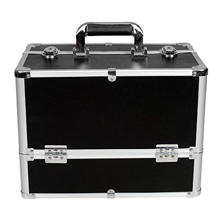 アナロジー仮定建築家[プロ仕様]Hapilife メイクボックス 大容量 6つトレイ 幅37cm ネイル ジュエリー ドライヤー アクセサリー シューケア用品 収納ケース ブラック