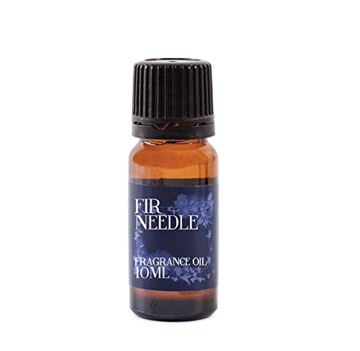力学故意のボリュームMystic Moments | Fir Needle Fragrance Oil - 10ml