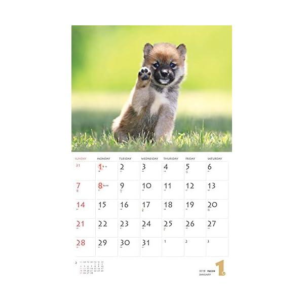 カレンダー2018 柴犬 (ヤマケイカレンダー...の紹介画像3