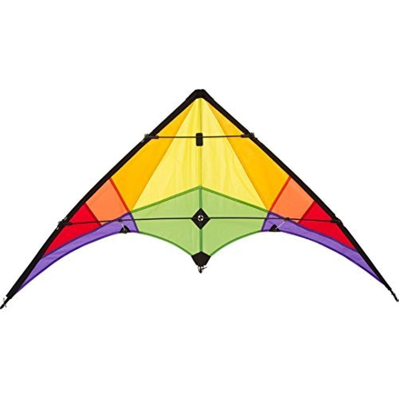 HQ Kites Eco Line: Stunt Kite Rookie Rainbow [並行輸入品]