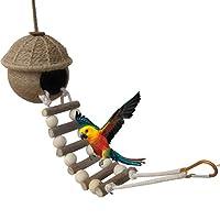 鳥のオウムの巣、繁殖の巣、オウムのおもちゃのココナッツ、ナチュラルココナッツのシェルループオウムのハムスターのためのはしごを持つ鳥の巣