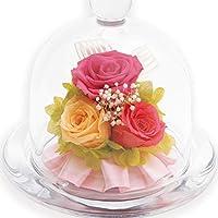 liLYS épice プリザーブドフラワー ガラスドームアレンジ バラ 3輪 シンプル型 (スウィートピンク)