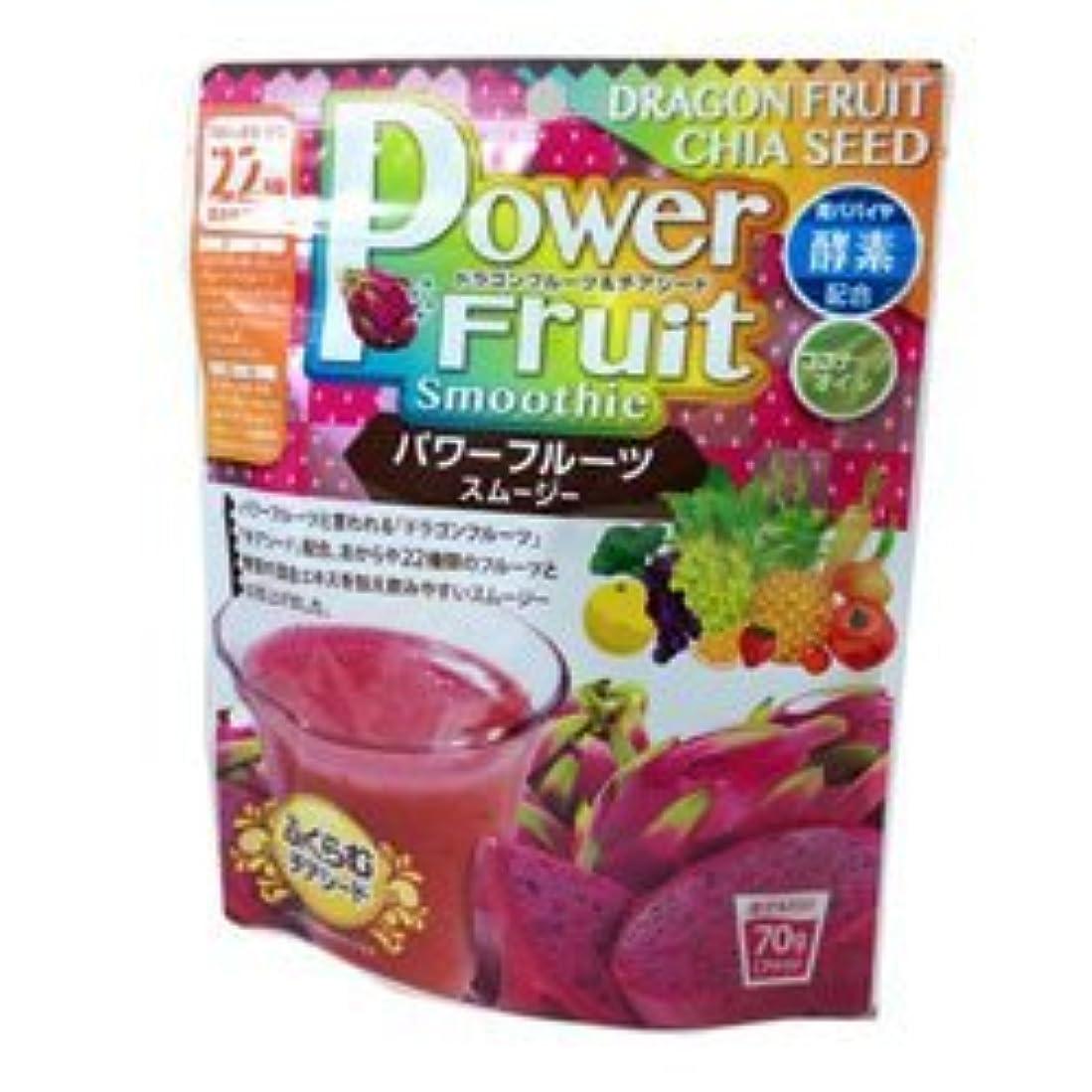 【ユニマットリケン】パワーフルーツスムージー 70g ×3個セット