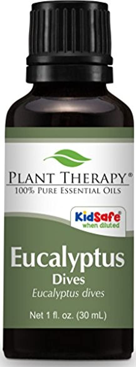 離れた乱暴なハーフPlant Therapy Eucalyptus Dives (Peppermint) Essential Oil 30 mL (1 oz) 100% Pure, Undiluted, Therapeutic Grade