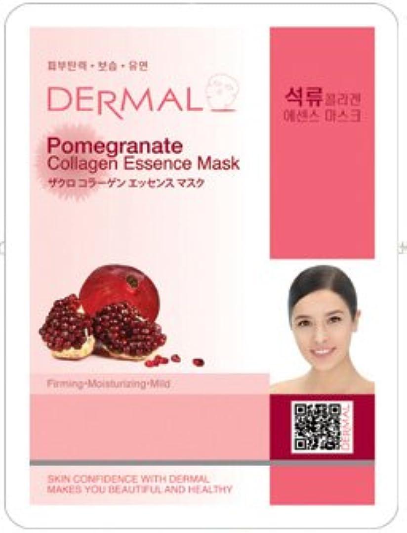 可塑性欠乏生産性シートマスク ザクロ 10枚 セット ダーマル(Dermal) フェイス パック