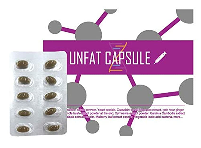 世辞ミケランジェロ流用するアンファットカプセル (1) / サプリメント ビタミンC アルギニン 栄養補助食品