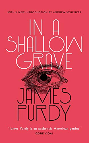 In a Shallow Grave (English Edition)