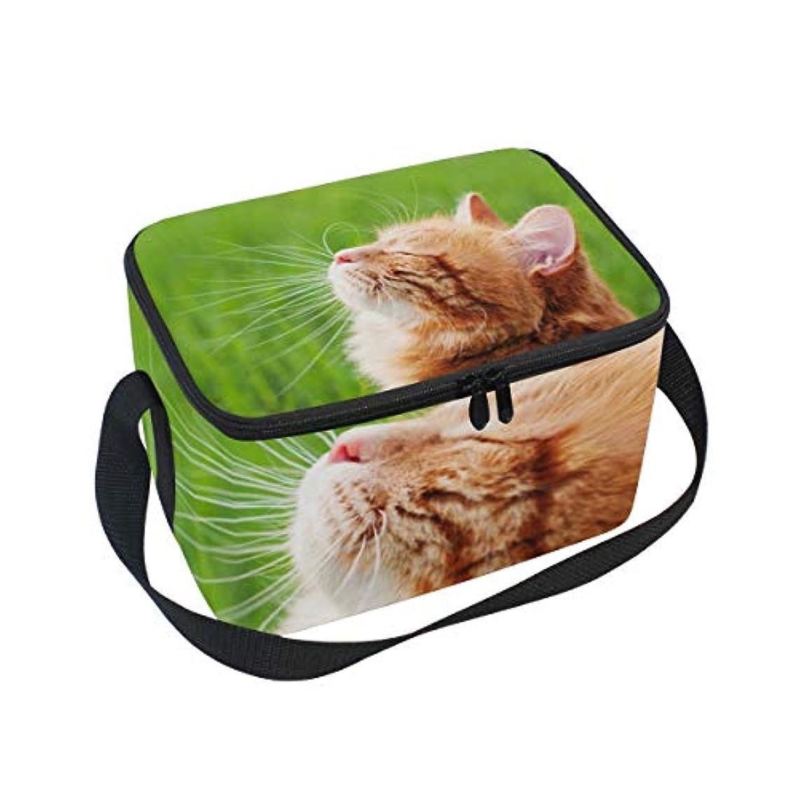 作家縞模様の底クーラーバッグ クーラーボックス ソフトクーラ 冷蔵ボックス キャンプ用品 横顔の猫柄 保冷保温 大容量 肩掛け お花見 アウトドア