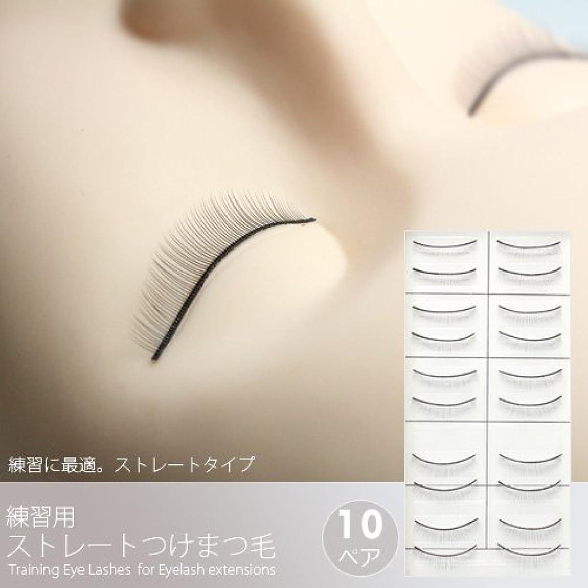 パイルどんよりしたマート練習用ストレートつけまつげ(10ペア)[Training Eye Lashes ]/まつ毛エクステ商材