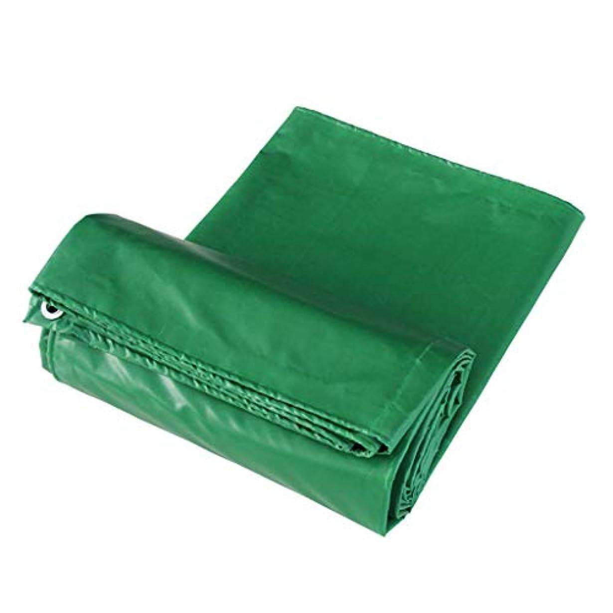 幾分希望に満ちた酔ってアウトドア ターポリン厚手PVCターポリンオーニングレインクロスターポリンサンシェード断熱材3つのアンチクロスプラスチックコーティングクロスカーターポリン テント (Color : Green, Size : 800*800cm)