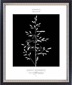 ポスター キャシー ケネディ Wild Grasses I 額装品 マッキアフレーム-S(ブラックシルバー)