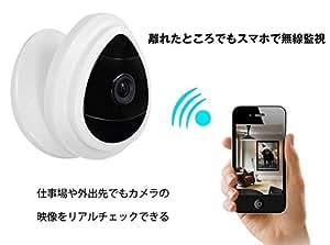 NexGadget スマート型カメラ 100万画素 動体検知 警報機能 LAN対応 スマホ/パソコン/テレビ対応