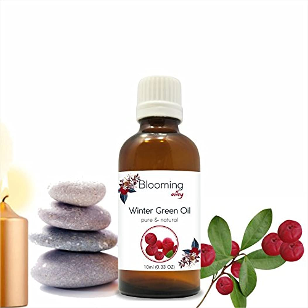 経営者逆さまに肩をすくめるWintergreen Oil(Gaultheria Procumbens) Essential Oil 10 ml or 0.33 Fl Oz by Blooming Alley