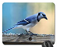 青い鳥は新しいデザインゴムコンピューターマウスパッドマットを閉じる