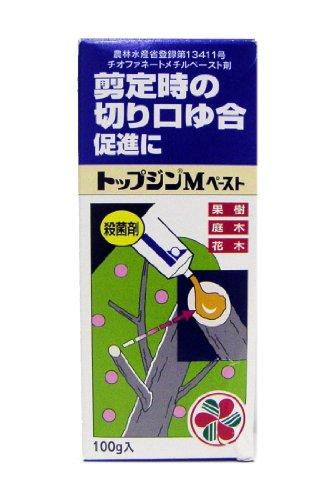 住友化学園芸 トップジンMペースト 100g