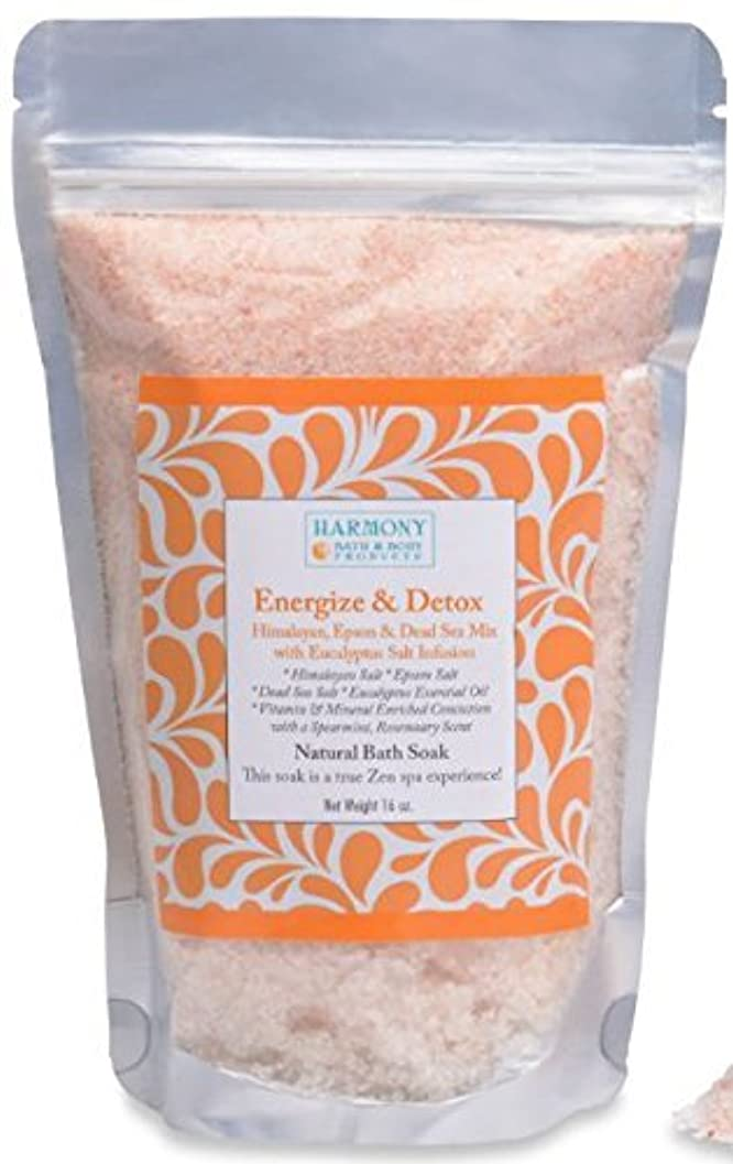 許容征服者病院Himalayan Salt Mix - Best Bath Salt - Energize & Detox - The Most Amazing Bath Soak! Energizes and Detox the Body...