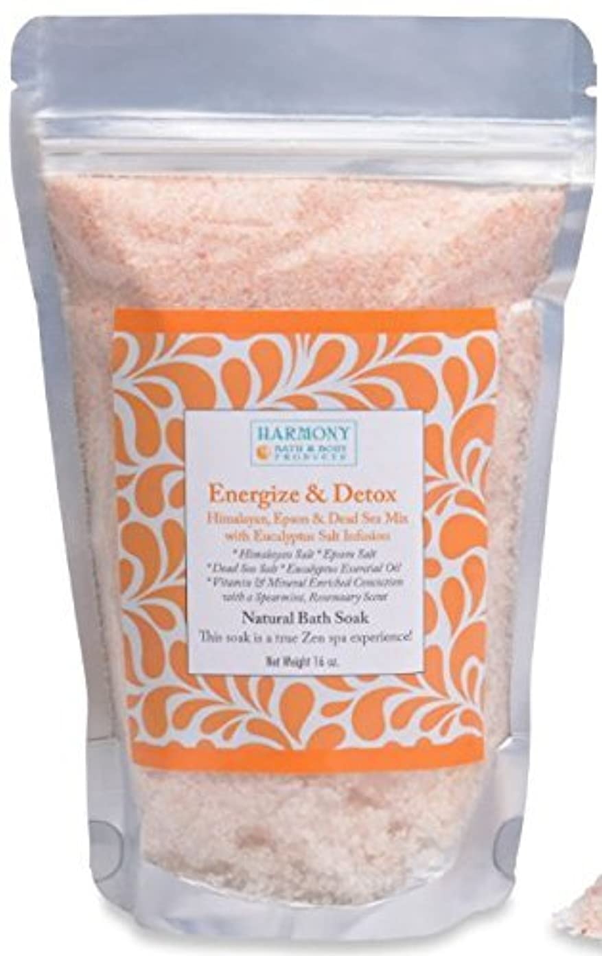 名誉あるピッチャー除去Himalayan Salt Mix - Best Bath Salt - Energize & Detox - The Most Amazing Bath Soak! Energizes and Detox the Body...