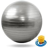 human バランスボール ポンプ付 65cm アンチバースト ヨガボール ダイエット 説明書付き