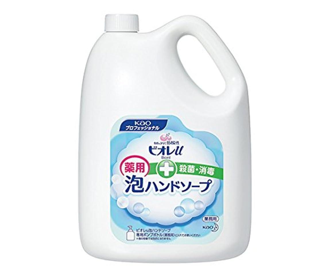 許容できるアセ凍る花王1-8646-03ビオレu泡ハンドソープマイルドシトラスの香り4L業務用