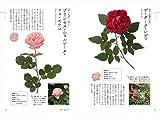 ときめく薔薇図鑑 (Book for discovery) 画像