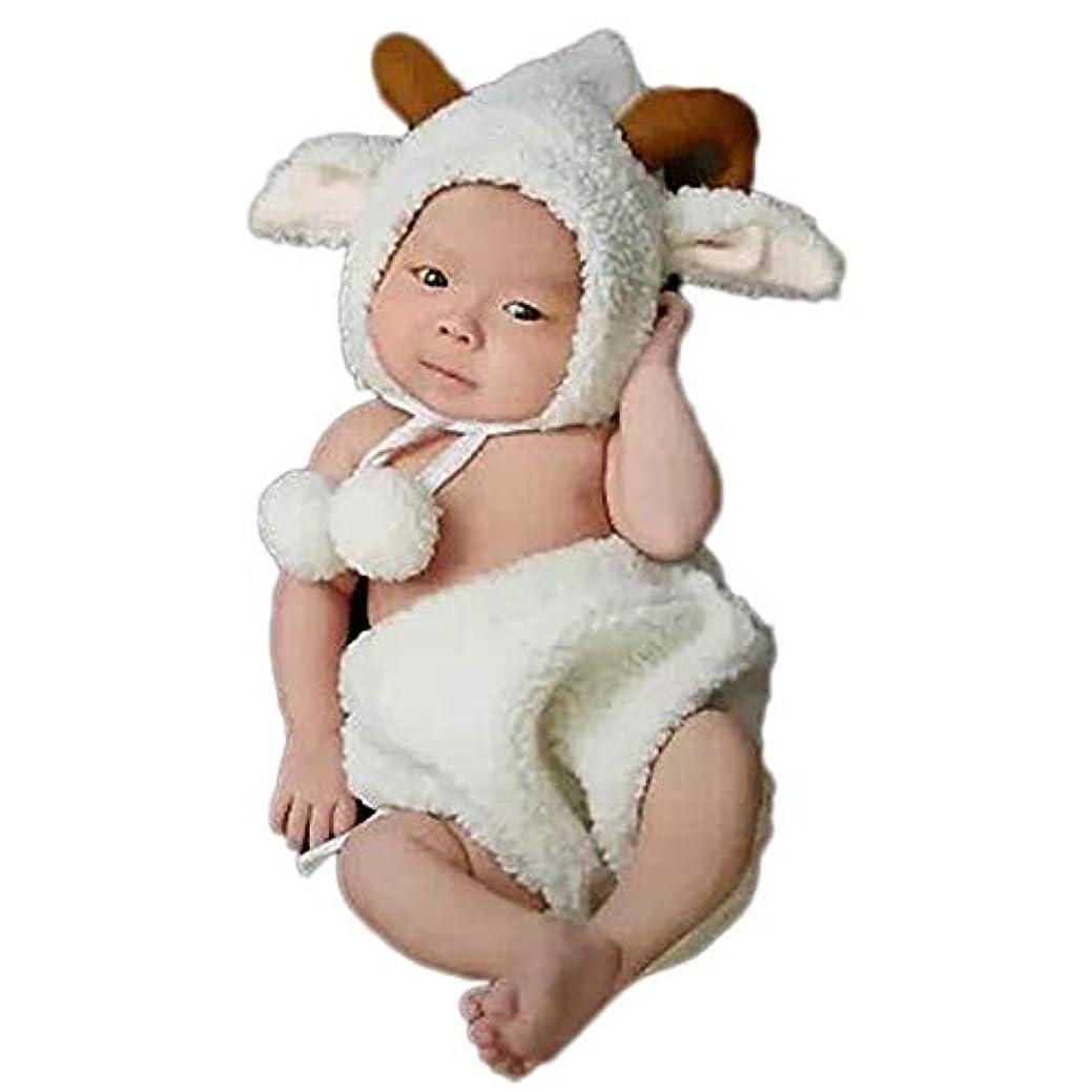 おもちゃ無効秘密のJ-LAVIE 寝相アート 赤ちゃん 着ぐるみ ペンギン ベビー コスプレ 写真 記念撮影