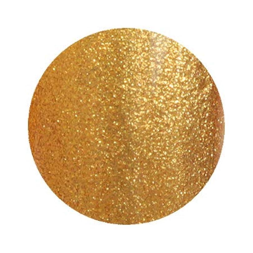 馬鹿げた有彩色の層Inity アイニティ ハイエンドカラー GD-04G ゴールド 3g