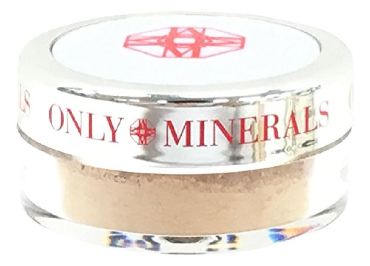 キノコ栄養確かにオンリーミネラル 薬用コンシーラーファンデーション ホワイトニングケア 1g ナチュラル