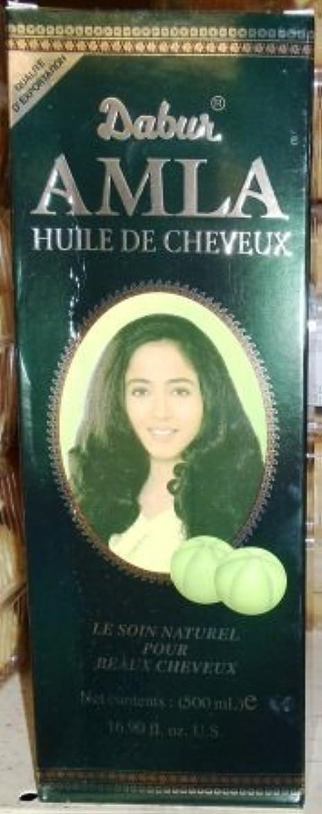 ねばねば呼び起こす子孫Dabur - Amla Hair Oil - 10.14 fl oz by N'iceshop [並行輸入品]