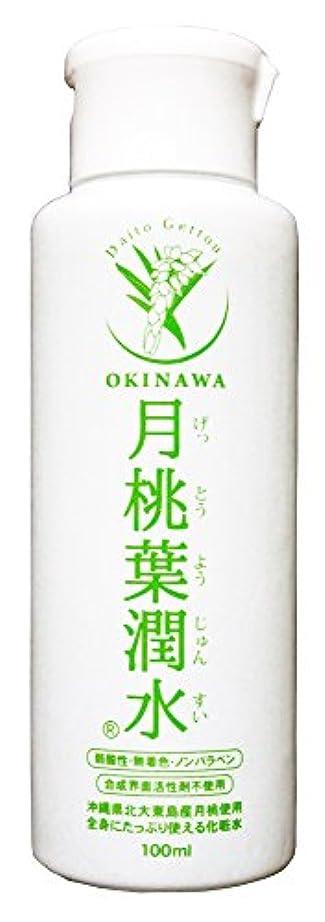 目立つ挽く溶けた化粧水 月桃葉潤水 100ml 1本