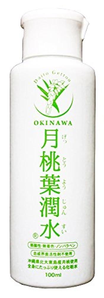 調和のとれた普通の岩化粧水 月桃葉潤水 100ml 1本