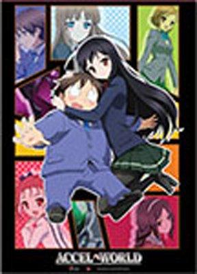 アクセル・ワールド 黒雪姫&有田春雪 タペストリー 約80x110cm 布製ポスター 並行輸入品