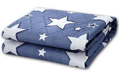 [해외]HANIL Electronic 전기 매트 전기 담요 전기 방석 220V (해외 직송)/HANIL Electronic electric mat electric blanket electric cushion 220V (oversea direct delivery goods)
