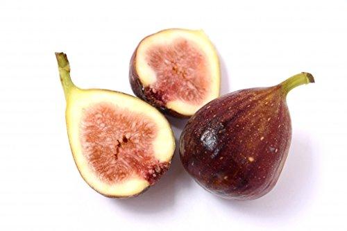期間限定です!! とろける果実 和歌山県産 いちじく 約1.5kg入 1箱