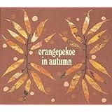orangepekoe in autumn